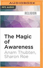 Magic of Awareness, Anam Thubten,  MP3 CD