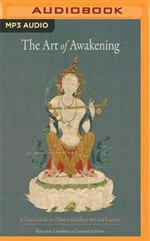 Art of Awakening MP3 CD