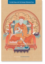 The Eighth Situpa on the Third Karmapa's Mahamudra