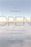 Future Is Open: Good Karma, Bad Karma, and Beyond Karma