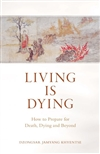 Living Is Dying: How to Prepare for Death, Dying and Beyond; Dzongsar Jamyang Khyentse