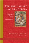 Extremely Secret Dakini of Naropa, Pabongka Rinpoche