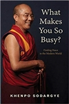 What Makes You So Busy?: Finding Peace in the Modern World,