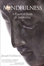 Mindfulness: A Practical Guide to Awakening   Joseph Goldstein