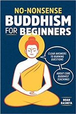 Non-Nonsense Buddhism for Beginners  Noah Rasheta