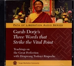 Garab Dorje's Three Words that Strike the Vital Point: Teachings on the Great Perfection with Drupwang Tsoknyi  Rinpoche (MP3 CD)
