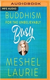 Buddhism for the Unbelievably(MP3 CD), Meshel Laurie