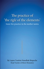 Practice of 'the tigle of the elements': Inner Fire Practice in the Mother Tantra