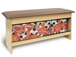Sports Theme Pediatric Table