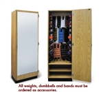 Hausmann Mirrored Storage Cabinet