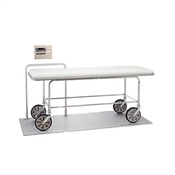 Scale-Tronix® In-Floor Stretcher Scale (KG Only)