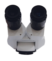 Seiler Straight Binocular Head