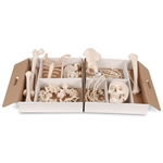 3B Scientific Disarticulated Half Human Skeleton Model, Wire Mounted Hand & Foot Smart Anatomy
