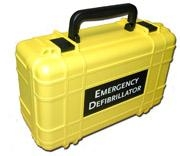 Deluxe Hard Yellow Carrying Case