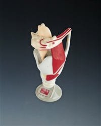 Functional Larynx Teaching Model