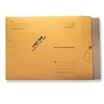 "Techno-Aide 15"" x 18"" Mailer with Chipboard, String and Button"