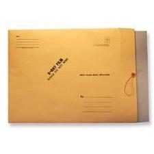 "Techno-Aide 11"" x 13"" Mailer with Chipboard, String and Button"