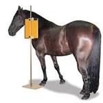 Techno-Aide Equine Cassette/CR-Plate Holder