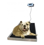 Large Platform Digital Veterinary Scale