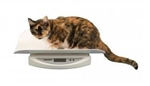 Digital Veterinary Tray Scale