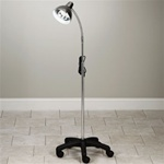 Clinton Value Gooseneck Lamp with 5-Leg, Mobile Base