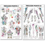 Two-Part Trigger Point Chart Set