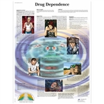 3B Scientific Drug Dependence Chart