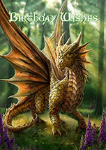 Friendly Dragon Card - 6 Pack