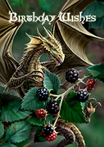 Blackberry Dragon Card - 6 Pack