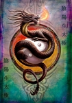 Yin Yang Protector Card - 6 Pack by Anne Stokes