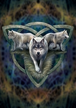 Wolf Trio Card - 6 Pack