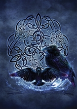 Celtic Raven Card - 6 pack