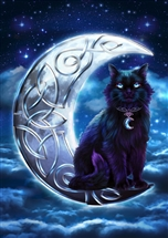 Celtic Black Cat Card - 6 pack