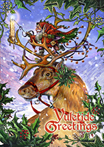 Guided by Northern Lights Yule Card - 6 Pack
