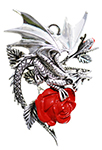 Draca Rosa for Charisma And Courage by Anne Stokes