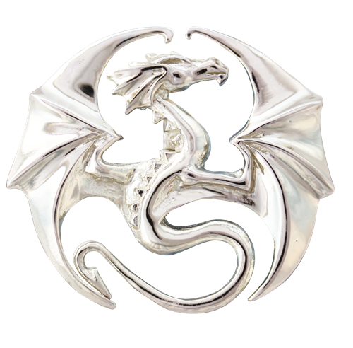 Draco for Stability & Progress by Anne Stokes
