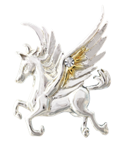Pegasus of the Stars for Quick Thought & Creativity by Anne Stokes