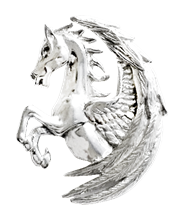 Pegasus Fortuna for Surmounting Obstacles by Anne Stokes