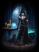Witches Lair Card - 6 pack