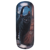 Brush with Magik (Black Cat) Eye Glass Case by Lisa Parker