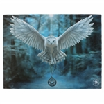 Awake Your Magic Canvas Art Print by Anne Stokes