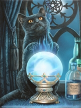 Witches Apprentice Cat Canvas Art Print by Lisa Parker