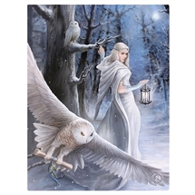 Midnight Messenger Canvas Art Print by Anne Stokes