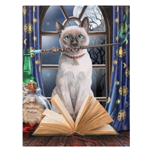 Hocus Pocus Cat Canvas Art Print by Lisa Parker