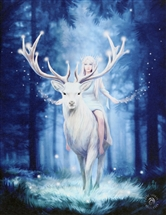 Fantasy Forest Canvas Print by Anne Stokes