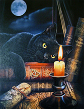 Witching Hour Canvas Art Print by Lisa Parker