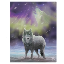 Aura Wolf Canvas Art Print by Anne Stokes
