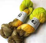 Targhee Classic yarn - Worsted weight - Maidenhair