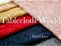 Paisley Lace Swatches