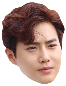 Star Cutouts Shudo EXO SINGLE MASK